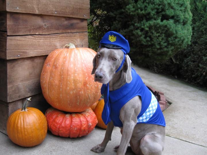 Maggie in her cop costume